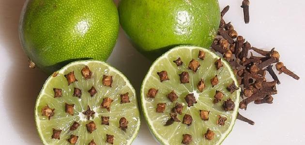 صورة طريقة طرد البعوض , اشياء بسيطة تفعليها لطرد الناموس من البيت