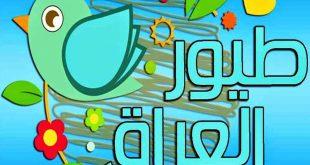 صور تردد قناة طيور العراق , قناة ممتعة للاطفال