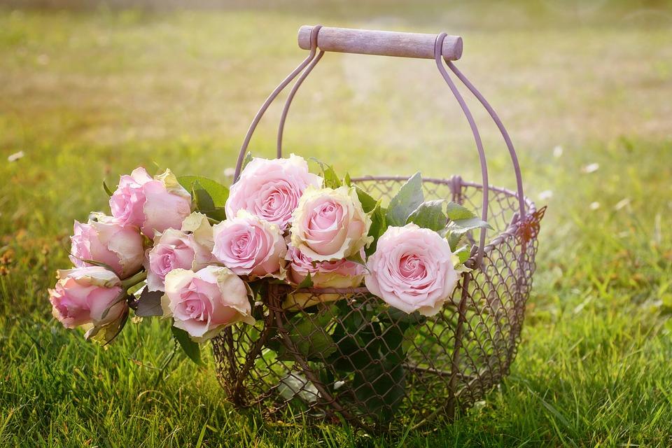 صورة احلى ورود الصباح , اروع الزهور لصباح ملئ بالتفاؤل