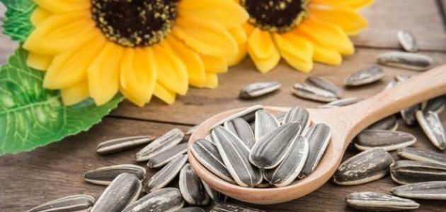 صورة فوائد بذور دوار الشمس للحامل , اهم النباتات المفيدة للجنين