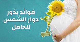 صور فوائد بذور دوار الشمس للحامل , اهم النباتات المفيدة للجنين