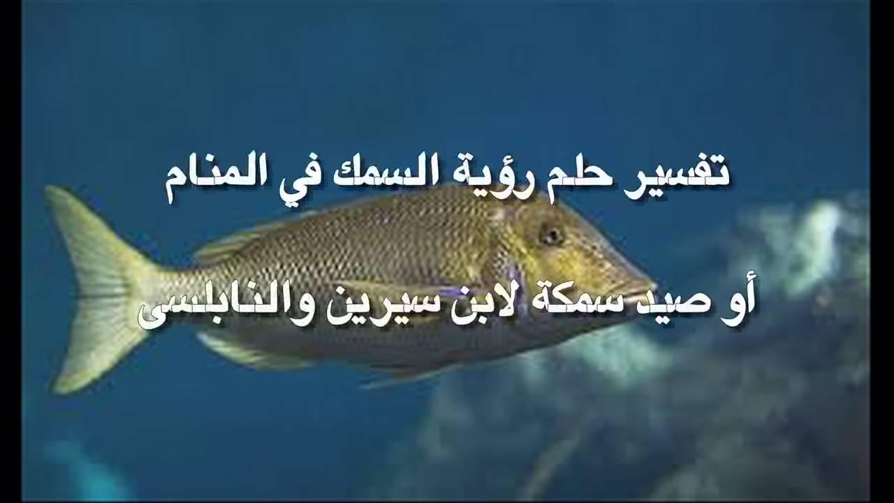 صورة في المنام صيد السمك , تفسير روية السمك في الحلم بالتفصيل