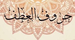 صور حرف العطف بل , حروف اللغة العربية