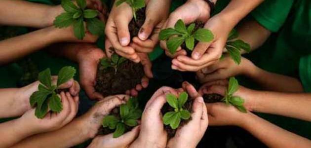 صورة طرق الحفاظ على البيئة , كيفية المحافظة باساليب بسيطة على البيئة النظيفة