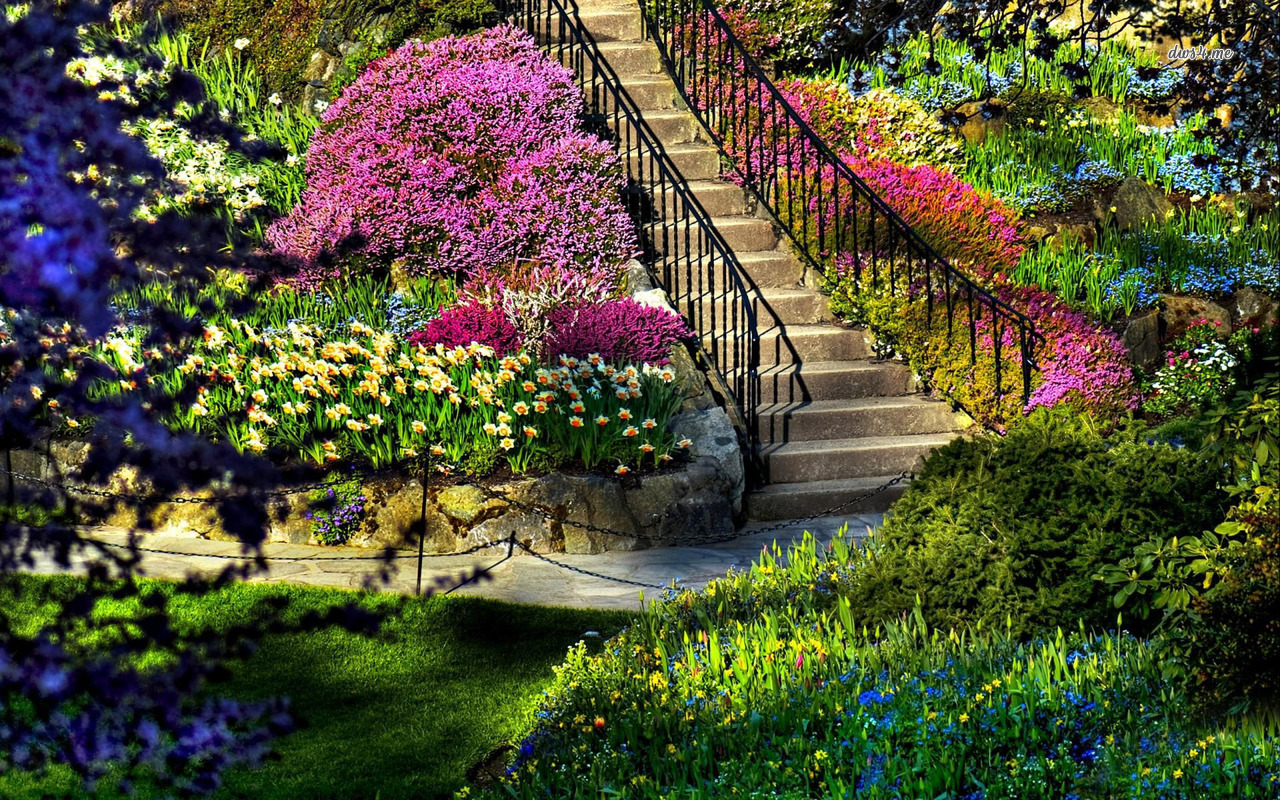 صورة صور حديقة جميلة , صورة من الجنة في الارض