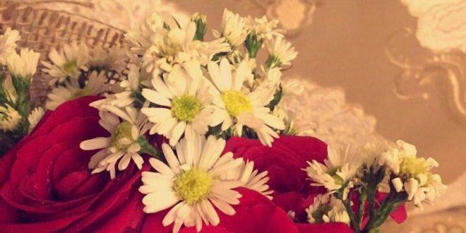 صورة خاطرة عن الورد , كلمات في عشق الزهور