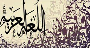 صورة بحث في اللغة العربية , بحث عن اللغه العربيه للمدرسه