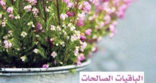 خلفيات اسلامية للفيس بوك , صور اسلامية دينية رائعه اوي