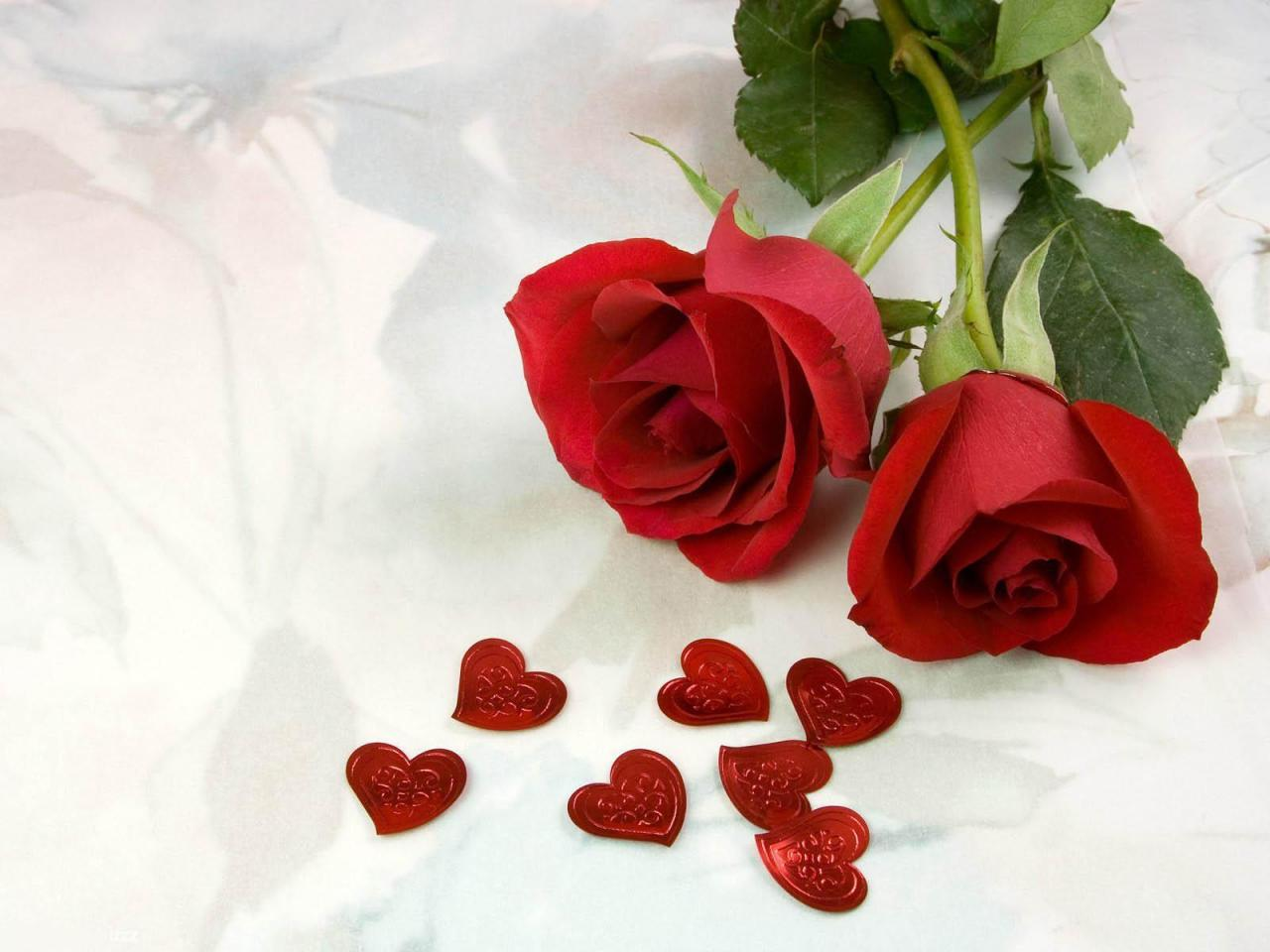 صورة اجمل صور ورود الحب , اجمل لغه هى الورود المذهله