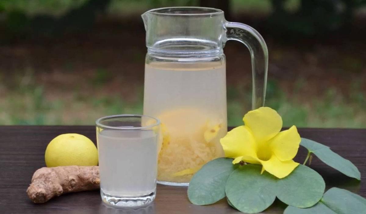 صورة الزنجبيل والليمون للتنحيف في اسبوع , تخلص من الكرش بكام قرش