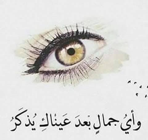 صورة شعر في جمال العيون , صورة عيون المها