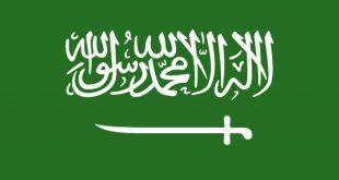 صورة صورة علم السعوديه , دمى فداك وطنى الحبيب