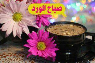 صورة جمل صباح الخير , افضل جمل و عبارات صباح الخير