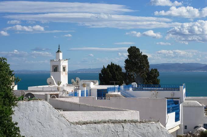 صورة تونس سيدي بوسعيد , معلومات عن سيدي بوسعيد بتونس