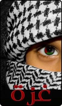 صورة شعر عن غزة , خلفيات اشعار رائعه عن غزة و فلسطين