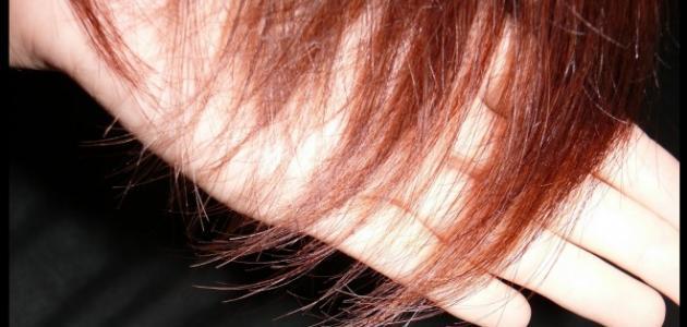 صورة العناية بالشعر المتقصف , كيف اتخلص من الشعر المتقصف