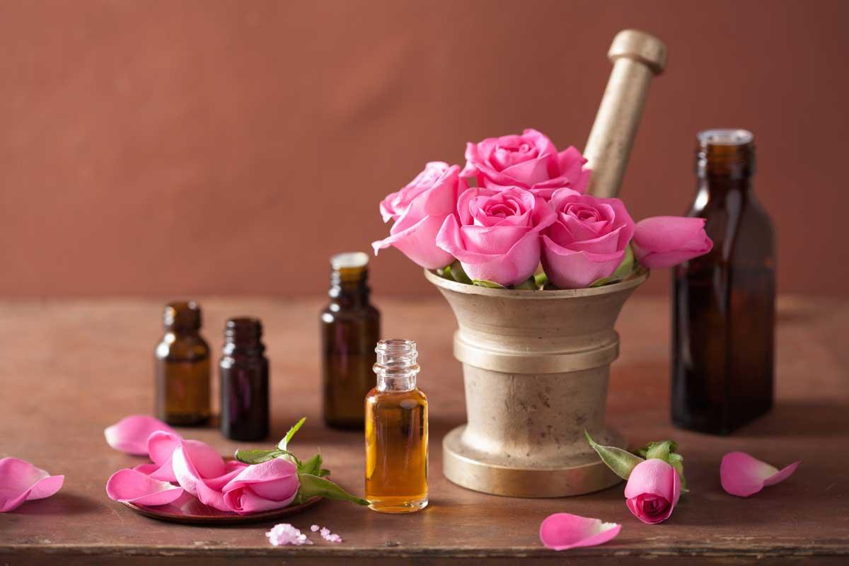 صورة زيت الورد لتبييض المناطق الحساسة , يا بضع الورد ويا جماله