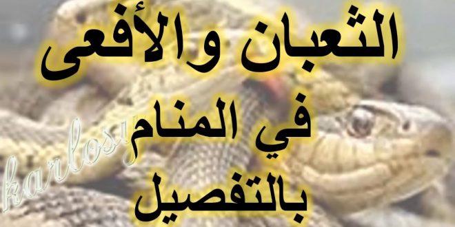 صورة رؤية الافعى بالمنام، التفسير لرؤيه الافعى او الثعبان في الحلم
