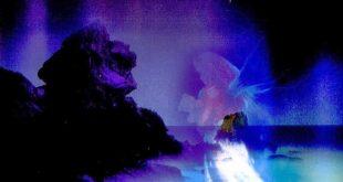 صورة تفسير شراء شنطة في المنام لابن سيرين ،شوفت شنطه في الحلم ده معناه ايه؟