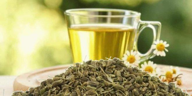 صورة فوائد شاي اليانسون ،فيما يستخدم شاي الينسون وما اهميته ؟