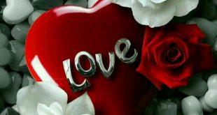 خلفيات حب ورومانسية , عالم كله حب ف حب