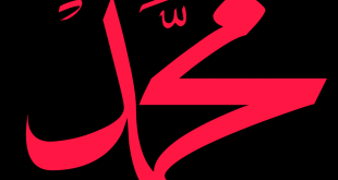 صورة صور وصفات يحملها اسم محمد,صور عن اسم محمد