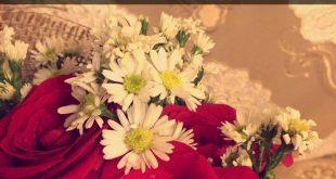 صورة عبارات عن الزهور ، كلمات جميله عن الزهور
