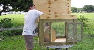 صورة حظيرة دجاج منزلية ،اين يمكن عمل حظر الدجاج في المنزل وما فائدتها