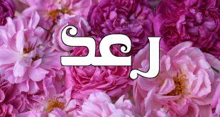 صورة معقول ده معني اسم رعد، معنى اسم رعد