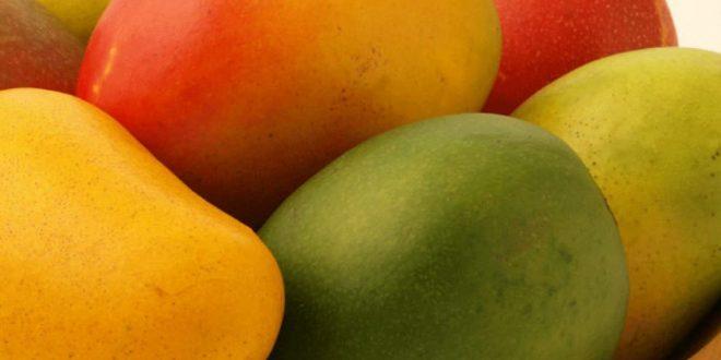 صورة تعرف ما هي فائدة المانجو , فوائد فاكهة المانجو